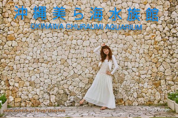 【旅遊】沖繩輕旅行。絕對不能錯過-海洋博公園內的美ら海水族館/海豚劇場